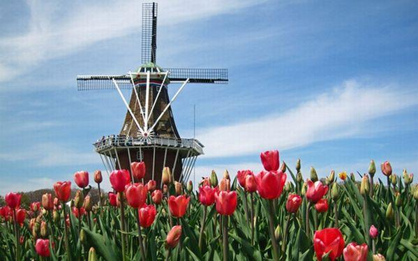 4 Jenis Beasiswa Studi ke Belanda